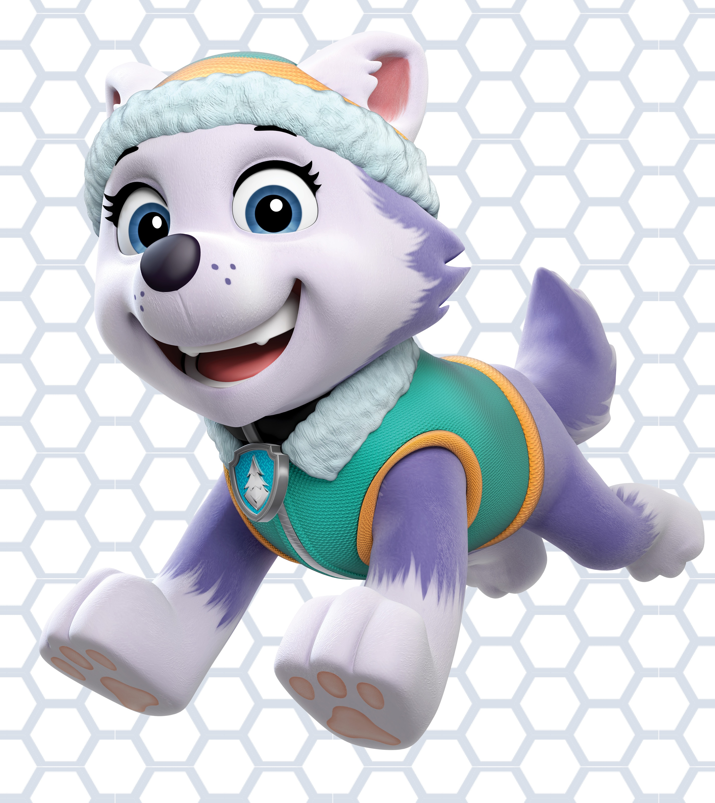 PAW Patrol Live! Everest